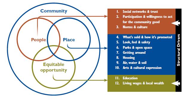 advantages and disadvantages of public health assessments